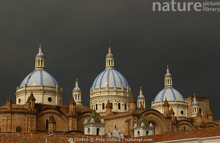The Immaculate Conception Cathedral with its three blue domes, Cuenca, Ecuador, LANDSCAPES,BUILDINGS,CITIES,CHRISTIANITY,ANDES,RELIGION, Pete Oxford