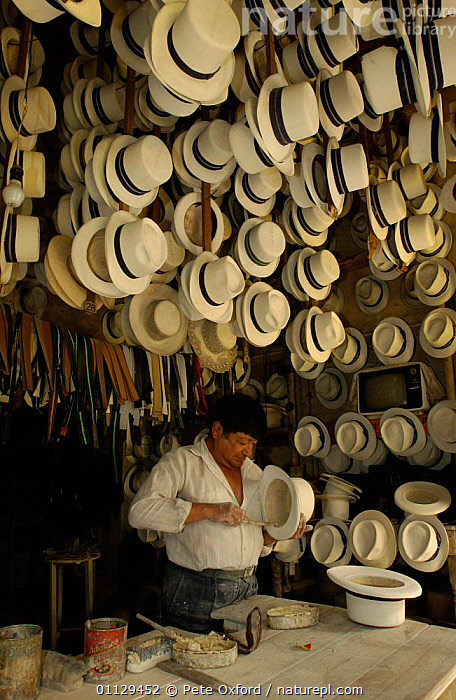Alberto Pulla, Panama hat maker, Cuenca, Andes, Ecuador Hats made from Toquilla straw  ,  TRADITIONAL,VERTICAL,TRADE,PEOPLE,MAKING,LANDSCAPES  ,  Pete Oxford