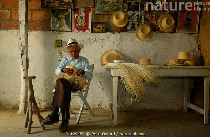 Fausto Mero (aged 95-yrs) making Panama hats, Montecristi, Ecuador. 2004, TRADITIONAL,REEDS,PEOPLE,LANDSCAPES,HAT,CRAFTS,AGED, Pete Oxford