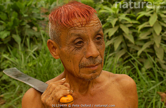 Colorado indian man with hair dyed with Achiote seeds, Ecuador, Santo Domingo de Los Colorados  ,  TRIBES,TRADITIONAL,PEOPLE,PLANTS,LANDSCAPES,KNIFE,COLORADOS,DYING,DECORATION  ,  Pete Oxford