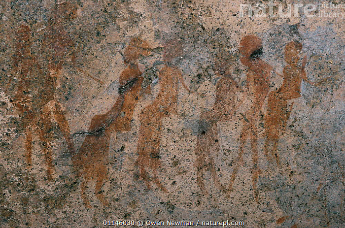 Rock art / cave paintings, people, Namibia., ANCIENT,ART,ARTIFACTS,CAVES,PEOPLE,ROCKS,SOUTHERN AFRICA,Catalogue1, Owen Newman