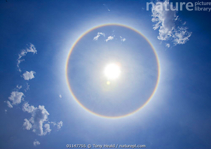 Circle round the sun, optical effect of high level ice crystals, around midday, Chobe NP, Botswana  ,  AFRICA,SKIES,SKY,SOUTHERN AFRICA,SPHERE,SUN,Catalogue1  ,  Tony Heald