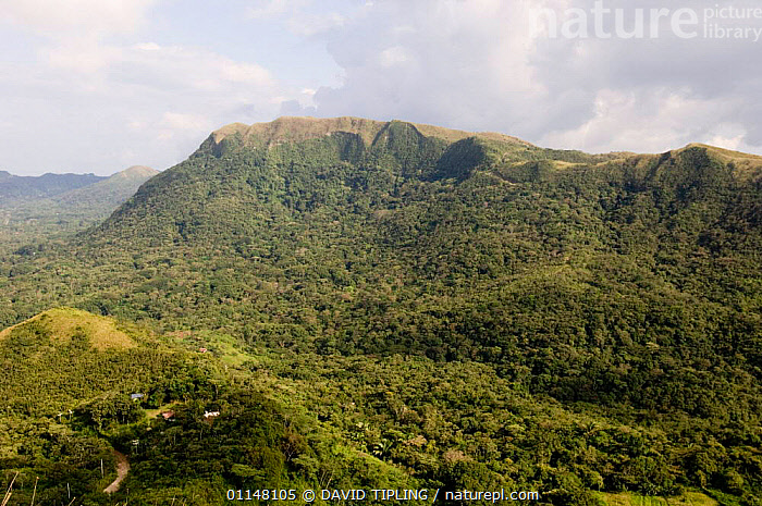 The volcanic crater of El Valle, Panama.  ,  CENTRAL AMERICA,LANDSCAPES,CENTRAL-AMERICA  ,  DAVID TIPLING