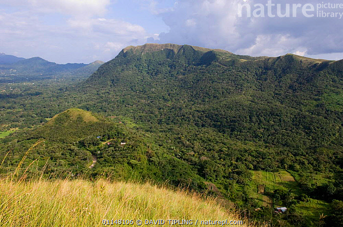 The volcanic crater of El Valle, Panama  ,  CENTRAL AMERICA,CRATERS,LANDSCAPES,CENTRAL-AMERICA  ,  DAVID TIPLING