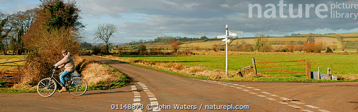 Cyclist on quiet country crossroads, near Wells, Somerset Levels, UK.  ,  BICYCLE,CYCLING,EUROPE,LANDSCAPES,LEISURE,OUTDOOR PURSUITS,ROADS,TRAVEL,UK,United Kingdom,British,SPORTS  ,  John Waters