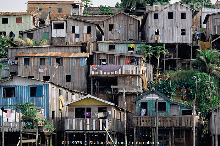 Cramped hillside terraced housing on stilts, Manaus, Brazil, South America  ,  BUILDINGS,CITIES,cramped,crowded,hillsides,HOMES,houses,housing,LANDSCAPES,poverty,south america,unstable,URBAN,SOUTH-AMERICA  ,  Staffan Widstrand