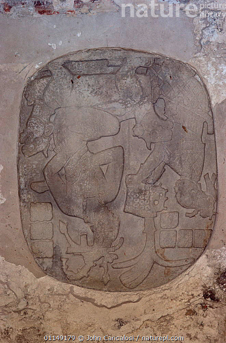 Detail of relief, Palenque ruins from Mayan civilisation, Mexico, Central America  ,  ancient,ART,ARTIFACTS,carvings,CENTRAL AMERICA,CULTURES,drawings,mayan,OLD,PEOPLE,CENTRAL-AMERICA  ,  John Cancalosi