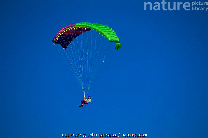 Paraglilding, South Island, New Zealand  ,  LEISURE,new zealand,OUTDOOR PURSUITS,PEOPLE,SPORT,SPORTS  ,  John Cancalosi