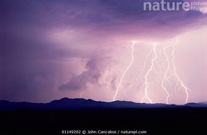 Lightning at night, Tucson, Arizona, USA  ,  LIGHTNING,natural phenomena,north america,STORMS,thunder,thunderstorms,USA,WEATHER  ,  John Cancalosi