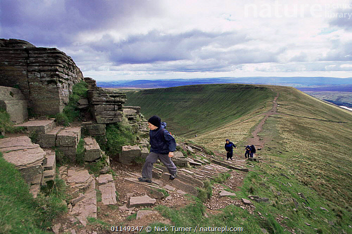 Hikers walking to Pen y Pan, Brecon Beacons NP, Powys, Wales, UK  ,  EUROPE,HIGHLANDS,hiking,LANDSCAPES,LEISURE,OUTDOOR PURSUITS,PEOPLE,RESERVE,ridge,UK,United Kingdom,British,WALES,GettyBOV  ,  Nick Turner