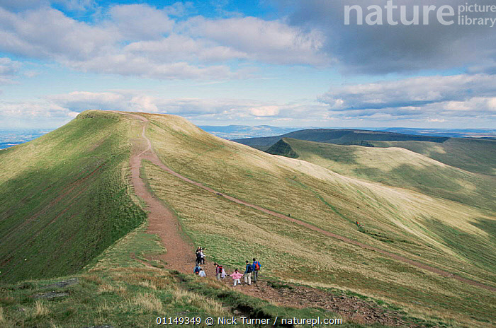 Family walking in Brecon Beacons NP, view towards Corn Du, Pen Y Fan, Powys, Wales, UK  ,  EUROPE,FAMILIES,HIGHLANDS,hiking,LANDSCAPES,LEISURE,MOORLAND,OUTDOOR PURSUITS,PEOPLE,RESERVE,ridge,UK,United Kingdom,British,WALES,GettyBOV  ,  Nick Turner