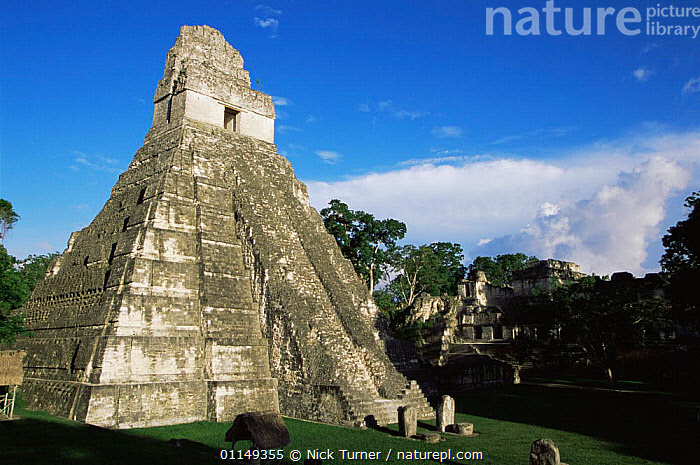 Mayan ruins, Tikal, Guatemala 2005  ,  ancient,attraction,BUILDINGS,CENTRAL AMERICA,Civilisation,CULTURES,landmark,LANDSCAPES,ruins,temples,TRIBES,VERTICAL,CENTRAL-AMERICA  ,  Nick Turner