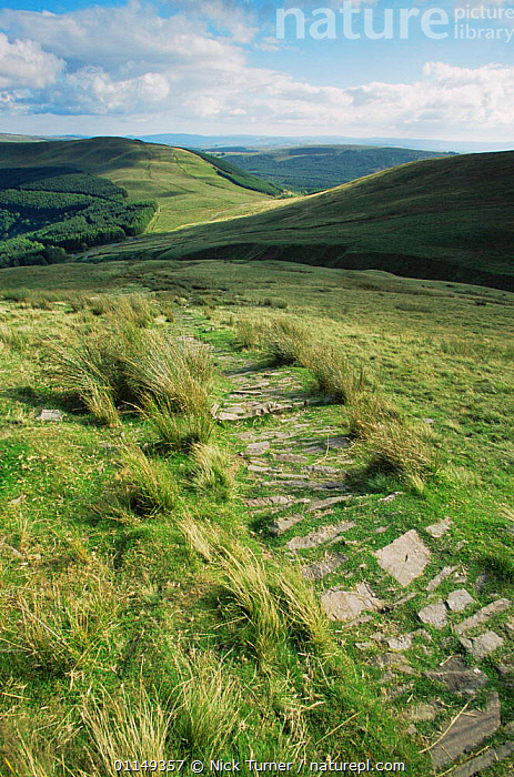 Man made path to prevent erosion, Brecon Beacons NP, Powys, Wales, UK  ,  EUROPE,HIGHLANDS,LANDSCAPES,MOORLAND,paths,pathway,RESERVE,trails,UK,VERTICAL,United Kingdom,British,WALES,GettyBOV  ,  Nick Turner