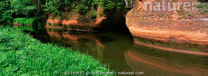 Red sandstone cliffs on banks of River Svetupe, near Lauvas, Latvia  ,  BALTIC,CIS,EUROPE,LANDSCAPES,PANORAMIC,RIVERS  ,  Niall Benvie