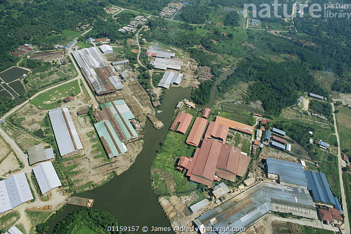 Aerial view of Timber mill and logging camp with huge logs from lowland Dipterocarp trees clearly visible, Sabah, Borneo, Malaysia, 2005  ,  ASIA,BUILDINGS,DEFORESTATION,INDUSTRY,LANDSCAPES,SOUTH EAST ASIA,TREES,TROPICAL RAINFOREST,Plants,SOUTH-EAST-ASIA  ,  James Aldred