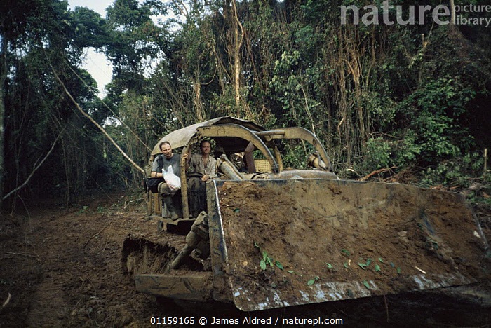 Bulldozer clearing rainforest for timber of Okoume tree {Aucoumea klaineana Pierre} Equatorial Guinea, Central Africa 1999  ,  AFRICA,CENTRAL AFRICA,DEFORESTATION,MACHINERY,PEOPLE,TREES,TROPICAL RAINFOREST,Plants,WEST-AFRICA  ,  James Aldred