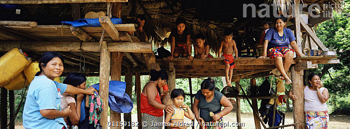 Embera Indian women and children in traditional thatched house. Mouge village, Darien Province, Panama, Central America 2006  ,  BUILDINGS,CENTRAL AMERICA,CHILDREN,COLOURFUL,GROUPS,PANORAMIC,PEOPLE,CENTRAL-AMERICA  ,  James Aldred
