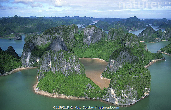 Aerial view of limestone island formations in Ha Long Bay, Vietnam, 2005. Filmed for BBC Planet Earth series.  ,  AERIALS,ASIA,CAVES,COASTAL WATERS,COASTS,LANDSCAPES,LIMESTONE,MARINE,PLANET EARTH,ROCK FORMATIONS,ROCKS,SEA,SOUTH EAST ASIA,Geology,SOUTH-EAST-ASIA  ,  Huw Cordey