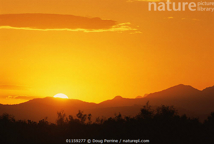 Sunrise near Cape Town airport, South Africa  ,  AFRICA,DAWN,LANDSCAPES,SILHOUETTES,SOUTHERN AFRICA,SOUTHERN AFRICA  ,  Doug Perrine