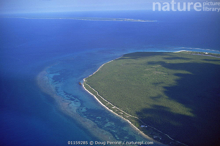 Aerial view of Little Cayman Island with Cayman Brac in the background, Caribbean  ,  CARIBBEAN,COASTS,CORAL REEFS,LANDSCAPES,WEST INDIES,Marine  ,  Doug Perrine