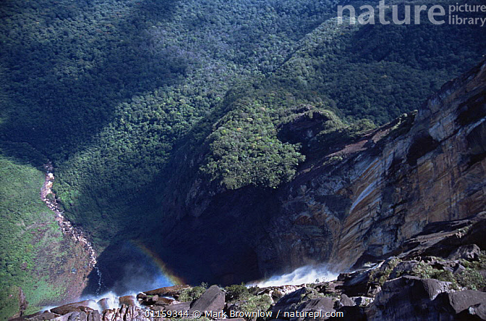 Looking over edge of Angel Falls, world's tallest waterfall, southern Venezuela, South America