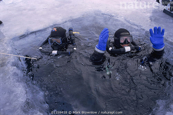 Rebreather instructor Ian Thomas and cameraman Didier Noirot prepare to dive under the ice, Lake Baikal, world's deepest and oldest (and largest by volume) freshwater lake, Siberia, Russia. BBC Planet Earth series, April 2005  ,  BREATHING HOLE,COLD,DIVING,EQUIPMENT,FILMING,FRESHWATER,FROZEN,ICE,LAKES,PEOPLE,RUSSIA,SCUBA,TWO,WATER,CIS  ,  Mark Brownlow