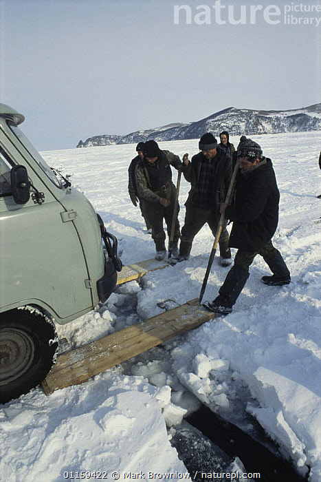 Local men preparing planks to use as bridge across cracking ice plate, a mile out from shoreline of Lake Baikal, world's deepest and oldest (and largest by volume) freshwater lake, Siberia, Russia BBC Planet Earth series, April 2005  ,  BRIDGES,CRACKS,DRIVING,FRESHWATER,FROZEN,GROUPS,ICE,LAKES,PEOPLE,RUSSIA,TRANSPORT,VEHICLES,VERTICAL,CIS  ,  Mark Brownlow