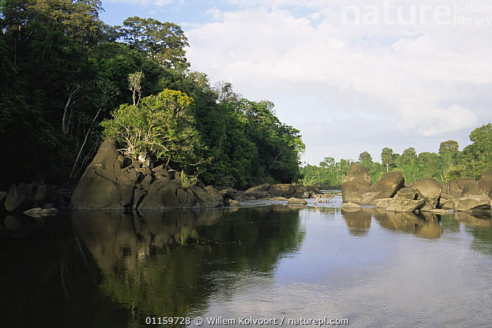 Coppename river near Raleigh Falls, Central Surinam Nature Reserve, Suriname . 2003.  ,  CENTRAL AMERICA,LANDSCAPES,RESERVE,RIVERS,ROCKS,SOUTH AMERICA,SURINAM,TROPICAL,TROPICAL RAINFOREST  ,  Willem Kolvoort