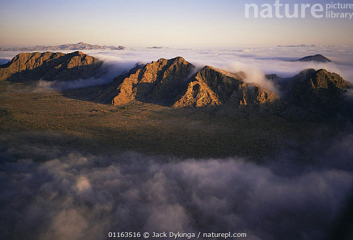 Aerial view of Sierra Hornaday mountains with morning mist pouring through the passes, Biosphere Reserve of Pinacate and Gran Desierto Altar, Sonora, Mexico  ,  AERIALS,CENTRAL AMERICA,DESERTS,FOG,LANDSCAPES,MEXICO,RESERVE,CENTRAL-AMERICA  ,  Jack Dykinga
