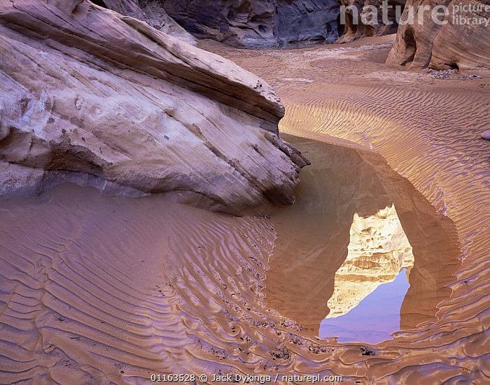Rippled canyon floor and reflection in pool remaining after flash flood, White Canyon, Utah, USA  ,  EROSION,LANDSCAPES,NORTH AMERICA,RESERVE,ROCK FORMATIONS,USA,WATER,Geology  ,  Jack Dykinga