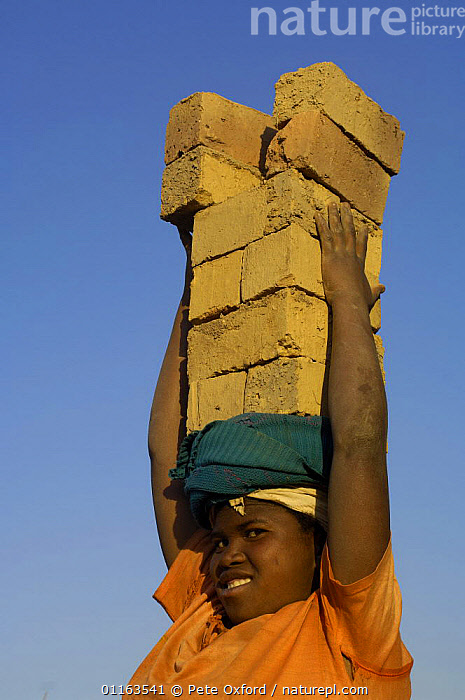 Woman carrying bricks made by digging up surrounding soil, individually moulding the bricks, building kilns and using large quantities of fire wood. Madagascar  2005  ,  brick,MADAGASCAR,PEOPLE,TRADITIONAL,VERTICAL,WOMAN,WORKING  ,  Pete Oxford