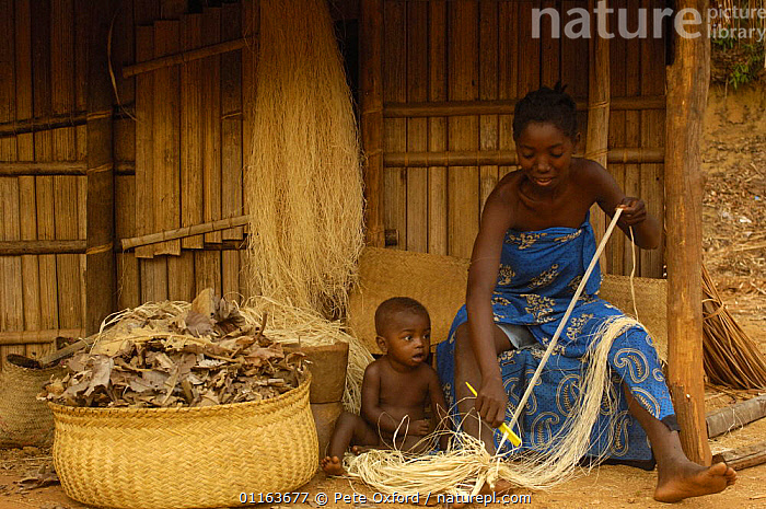 Sakalava woman working with Raffia from the Raffia palm (Raffia rarinifera) Ankarafantsika Nature Reserve, Western deciduous forest. MADAGASCAR 2005  ,  BABIES,crafts,mother baby,PEOPLE,TRADITIONAL,TRIBES,weaving,MADAGASCAR  ,  Pete Oxford
