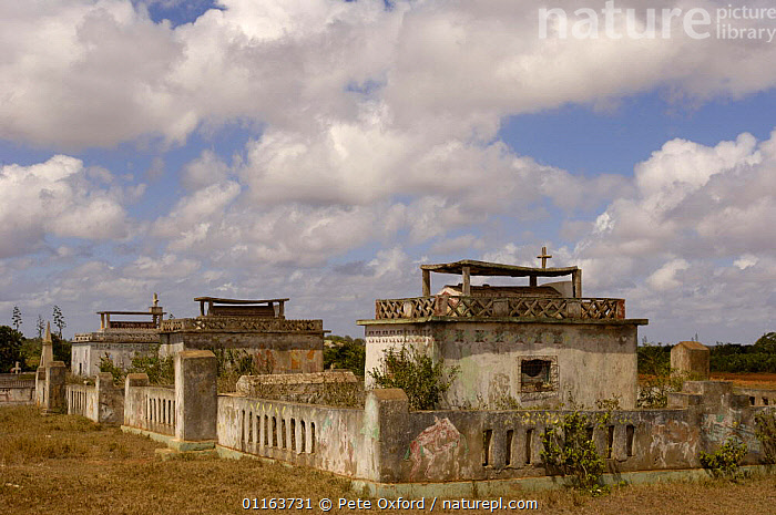 Antandroy Tombs decorated with 'aloalo' (sculptured wooden posts set upright on top of the tomb - often depicting scenes from the person's life).  Southern MADAGASCAR  ,  BUILDINGS,graves,LANDSCAPES,MADAGASCAR  ,  Pete Oxford