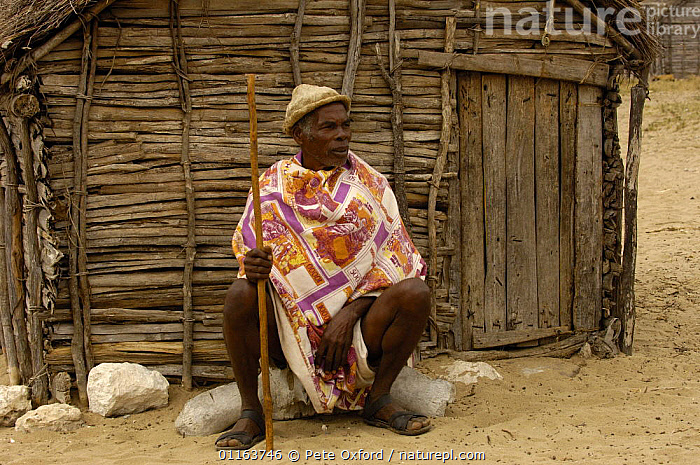 Antandroy man wearing hat made from the pith of cactus pads, sitting outside traditional house made from Didiereacaea plants. Spiny forests of Southern Madagascar  2005  ,  BUILDINGS,MADAGASCAR,PEOPLE,TRADITIONAL,TRIBES  ,  Pete Oxford