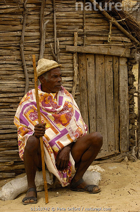 Antandroy man wearing hat made from the pith of cactus pads, sitting outside traditional house made from Didiereacaea plants. Spiny forests of Southern Madagascar  2005  ,  MADAGASCAR,PEOPLE,TRADITIONAL,TRIBES,VERTICAL  ,  Pete Oxford