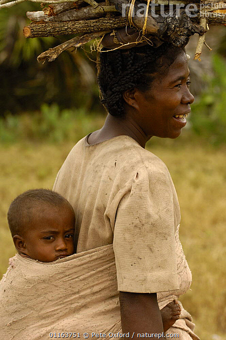 Antandroy woman carrying child and collecting firewood. Spiny forests of Southern Madagascar  2005  ,  BABIES,MADAGASCAR,PEOPLE,TRADITIONAL,TRIBES,VERTICAL  ,  Pete Oxford