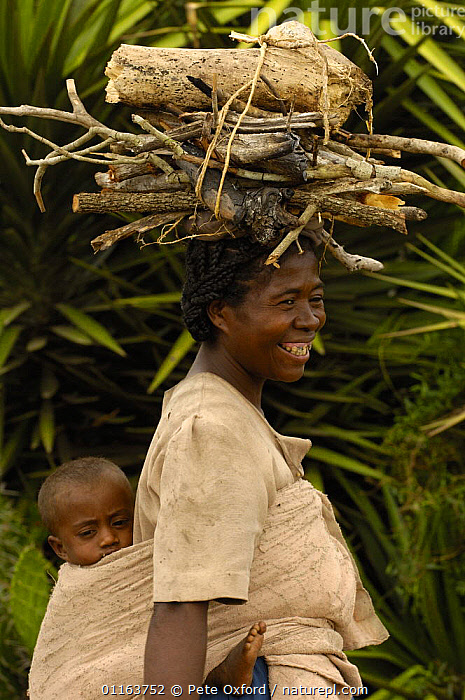 Antandroy woman carrying child and collecting firewood. Spiny forests of Southern Madagascar 2005  ,  MADAGASCAR,PEOPLE,TRADITIONAL,TRIBES,VERTICAL,Wood  ,  Pete Oxford