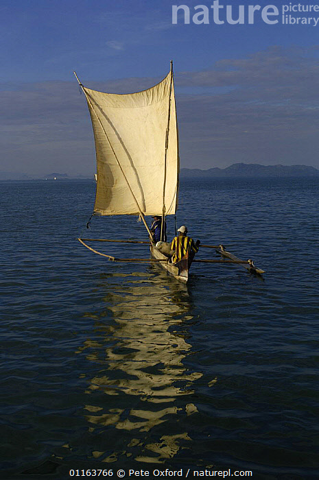 Piroque or outrigger canoe going out to sea for the day to set fishing nets. Nosy Faly. North eastern MADAGASCAR 2005  ,  BOATS,COASTS,Fishing,MADAGASCAR,PEOPLE,TRADITIONAL,VERTICAL  ,  Pete Oxford