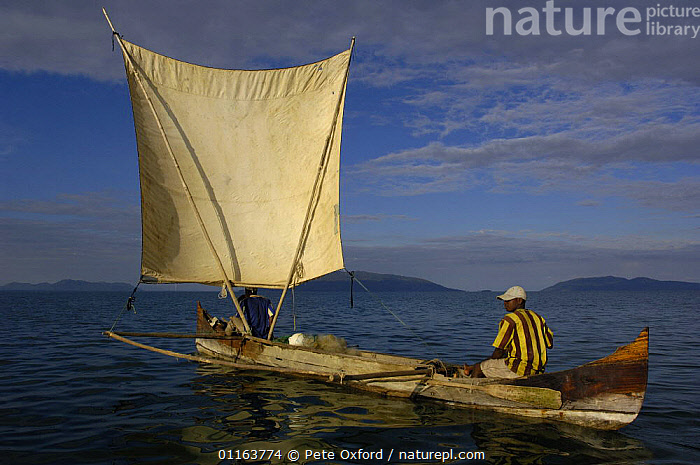 Piroque or outrigger canoe with local fishermen out at sea setting fishing nets. Nosy Faly. North eastern MADAGASCAR 2005  ,  BOATS,MADAGASCAR,PEOPLE,TRADITIONAL,TRIBES  ,  Pete Oxford