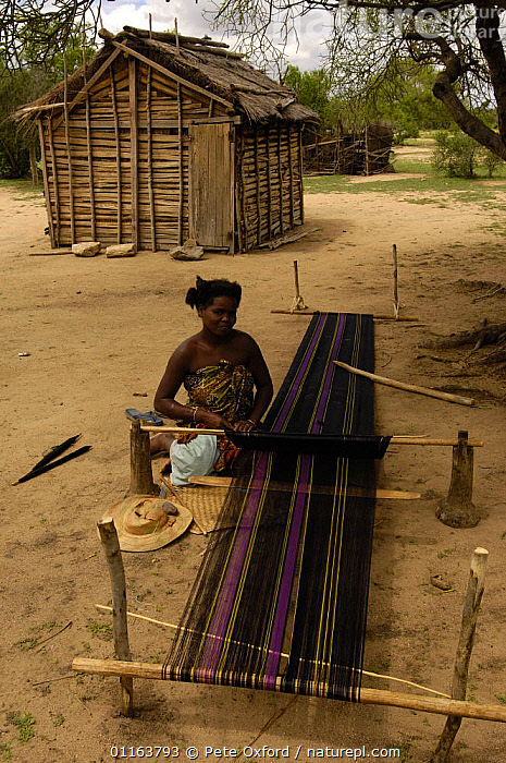 Mahafaly woman weaving a 'lamba'. The cloth worn by both men and women. Near Betioky, south-west coast of MADAGASCAR   2005  ,  BUILDINGS,crafts,MADAGASCAR,PEOPLE,TRADITIONAL,TRIBES,VERTICAL  ,  Pete Oxford