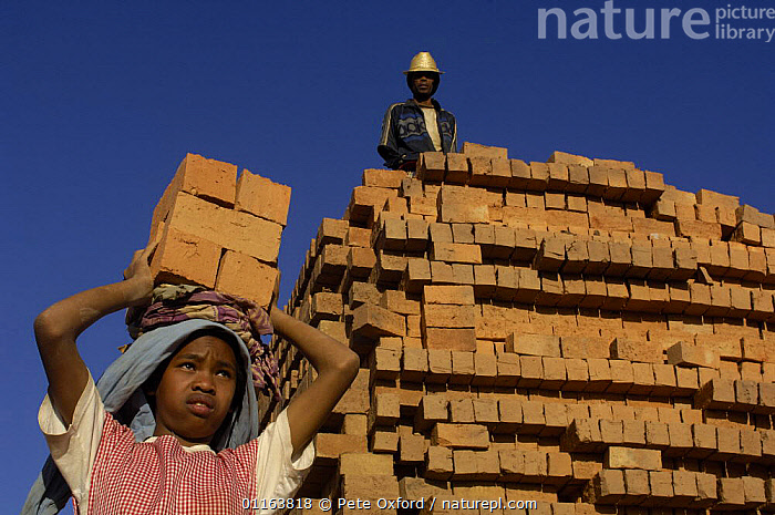 Child carrying bricks. MADAGASCAR 2005  ,  CHILDREN,MADAGASCAR,PEOPLE,TRADITIONAL,WORKING  ,  Pete Oxford