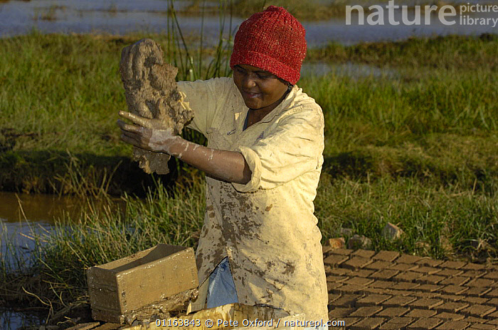 Woman making bricks from mud. They will then be sun-dried before being stacked and fired. Antananarivo city. Highlands of MADAGASCAR 2005  ,  BUILDINGS,MADAGASCAR,PEOPLE,WORKING  ,  Pete Oxford
