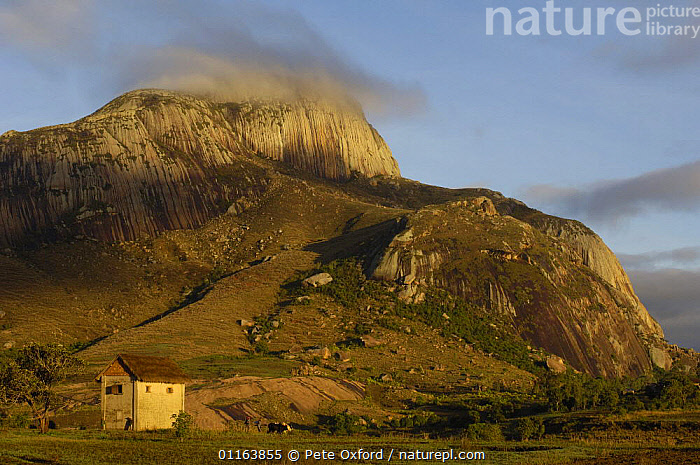 Betsileo village at dawn near Ambalavao town. South-central highlands of MADAGASCAR  ,  BUILDINGS,LANDSCAPES,MADAGASCAR,TRIBES,villages  ,  Pete Oxford