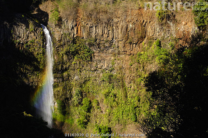 Petit cascade (waterfall) in Montagne d'Ambre or Amber Mountain National Park. Northern MADAGASCAR  ,  LANDSCAPES,MADAGASCAR,RESERVE,WATERFALLS  ,  Pete Oxford