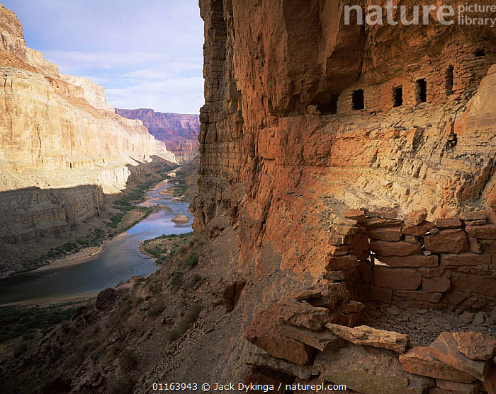 Colorado river, Marble Canyon, Grand Canyon National Park, Arizona, USA with Nankoweap Canyon's Anasazi indian Granaries in foreground  ,  BUILDINGS,CLIFFS,GRANARY,LANDSCAPES,NORTH AMERICA,NP,RESERVE,RIVERS,ROCK FORMATIONS,RUINS,USA,Geology,National Park  ,  Jack Dykinga