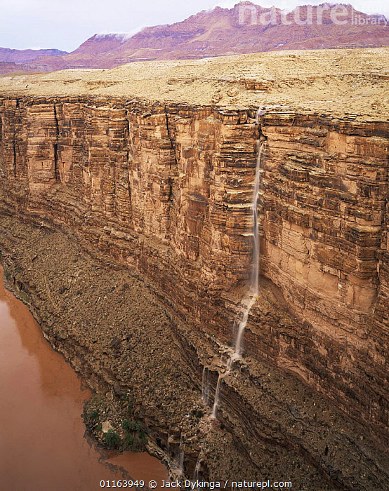 Water from flash floods cascades down Marble Canyon into the Colorado River, Grand Canyon NP, Arizona, USA  ,  CLIFFS,EROSION,LANDSCAPES,NORTH AMERICA,NP,RESERVE,RIVERS,USA,VERTICAL,WATERFALLS,Geology,National Park,Catalogue1  ,  Jack Dykinga