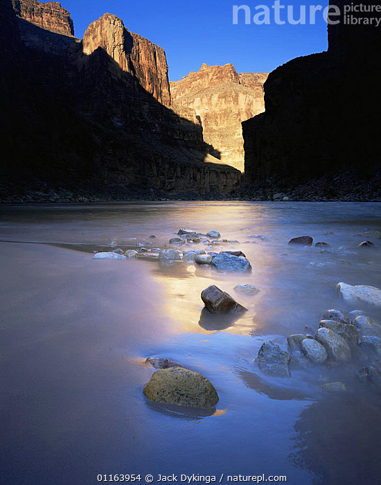 Sunrise reflected off canyon wall onto moist sand at base of National Canyon, Grand Canyon NP, Arizona, USA  ,  CLIFFS,DAWN,LANDSCAPES,NORTH AMERICA,NP,REFLECTIONS,RESERVE,RIVERS,ROCK FORMATIONS,USA,VERTICAL,Geology,National Park  ,  Jack Dykinga