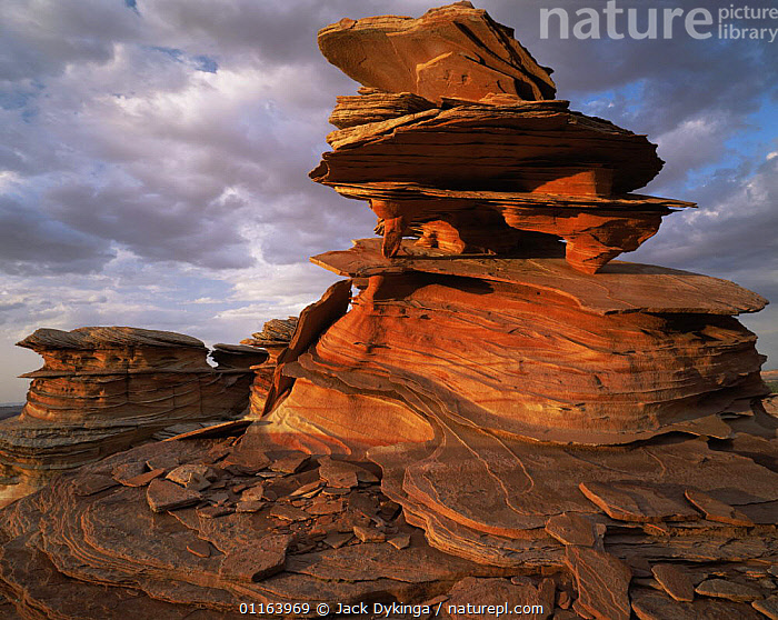 Petrified sand dunes with eroded sandstone flakes at sunset, Paria Canyon-Vermilion Cliffs Wilderness, Arizona, USA  ,  ARTY,BALANCE,EROSION,LANDSCAPES,NORTH AMERICA,RESERVE,ROCK FORMATIONS,STRIATIONS,USA,Geology  ,  Jack Dykinga