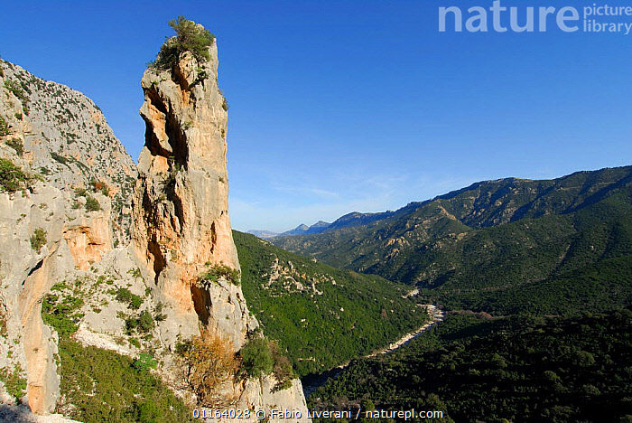 Rock formation with mountain landscape, Silana, Sardinia, Italy  ,  EUROPE,LANDSCAPES,ROCK FORMATIONS,ROCKS,Geology , Supramonte NP, national park  ,  Fabio Liverani