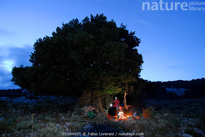 People sheltering under a tree with fire, Sardinia, Italy  ,  CAMPING,EUROPE,LEISURE,NIGHT,OUTDOORS,PEOPLE , Supramonte NP, national park  ,  Fabio Liverani